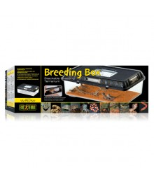 EXOTERRA Breeding Box Large