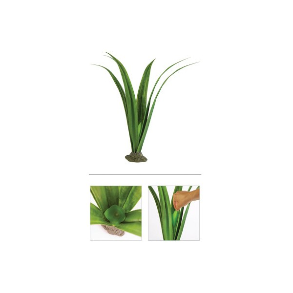 exoterra plante scindapsus pour terrarium tropical. Black Bedroom Furniture Sets. Home Design Ideas