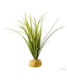 EXOTERRA Turtle Grass - Plante herbe pour tortue